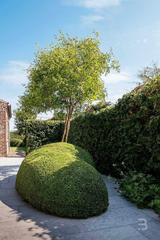 Afbeelding project Hoeve met karaktervolle bomen en mooie spiegelvijver