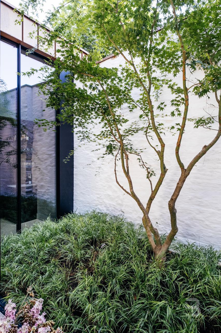 Afbeelding project Groene patio